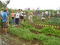 the nature conservancy board of directors visit cedevis fundar lifestyle demotration center