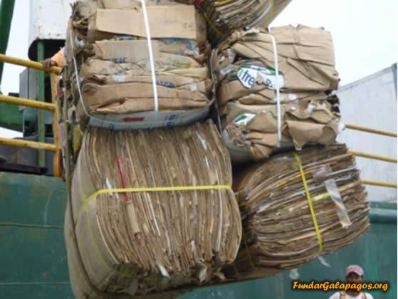 Materiales reciclados en Isla Isabela son enviados al continente